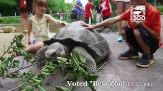 Cincinnati Zoo Voted Best Zoo