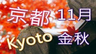 上部-治愈旅行 京都楓葉 紅葉Kyoto 旅行的意义 旅行的意義 治愈系