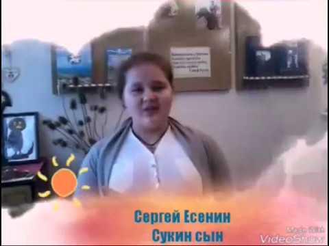 Изображение предпросмотра прочтения – ЕкатеринаМогильникова читает произведение «Сукин сын» С.А.Есенина