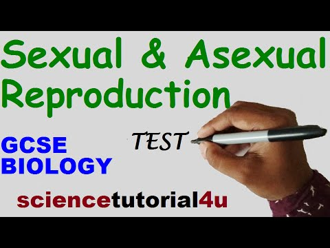 Sexual and asexual reproduction quiz questions