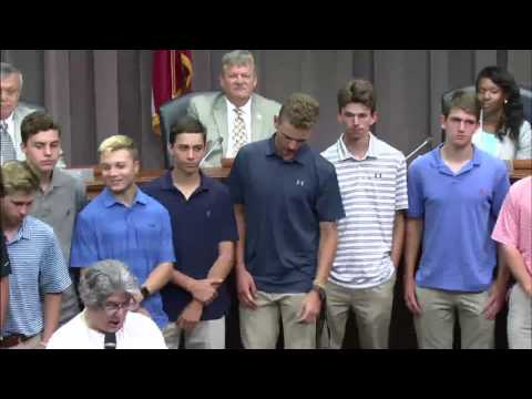 Cobb County Board of Commissioners - 06/13/17