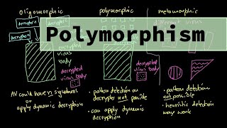 Malware Theory - Oligomorphic, Polymorphic and Metamorphic Viruses