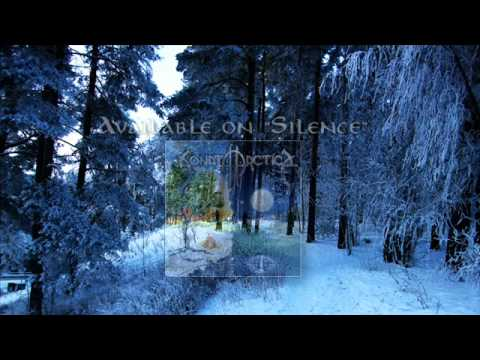 Sonata Arctica - Respect the Wilderness (With Lyrics)