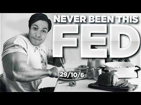 LL STYLISH | I'VE NEVER BEEN THIS FED BEFORE (MERCH AVAILABLE)