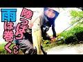 【釣りガール】初場所の陸っぱりの雨の日は巻いたら釣れる!五三川
