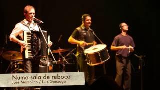 Baião Instrumental - Numa Sala de Reboco / Asa Branca (Blues)