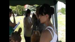 Выставка собак ККУ 19 мая 2012  Луганск, Украина 21