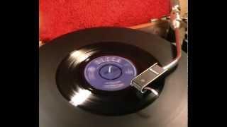 Nashville Teens - The Little Bird - 1965 45rpm