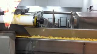 Crisps on the production line at Largo Foods