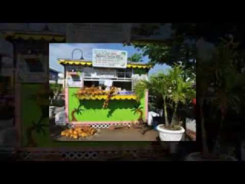 Freeport Bahamas Excursions | Grand Bahama Tours
