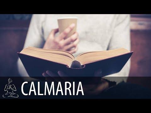 🎧 PEQUENA CAFETERIA EM DIA CHUVOSO ~ Padaria, Pessoas ~ Concentrar, Estudar ~ CALMARIA ~ ♫047