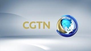 CCTV Chinese Spring Festival Gala