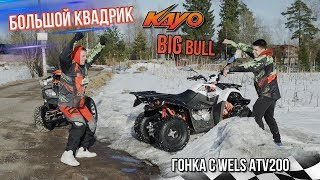 Большой квадроцикл Kayo Big Bull. Гонка с Wels ATV 200