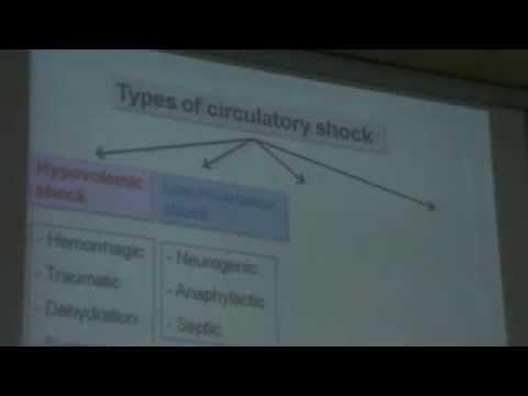 Dr Hany Gamal 10-4 Circulatory Shock