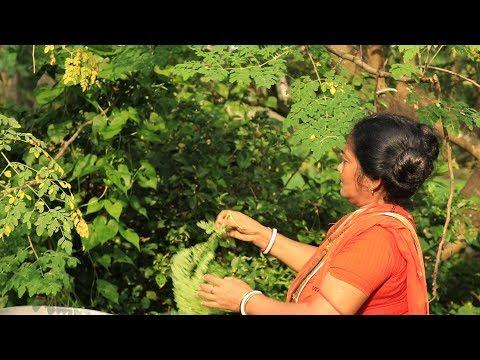 Moringa leaves recipe - Drumstick tree leaves recipe