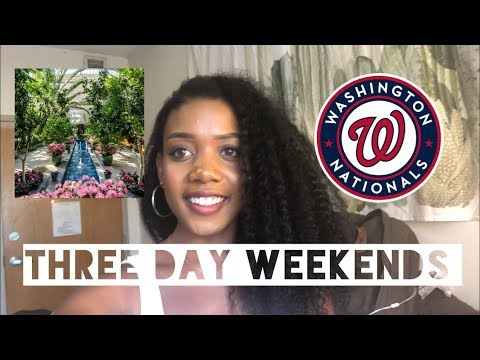 Things to do in washington dc mlk weekend