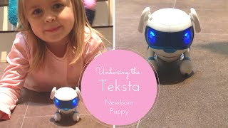 Unboxing & Trying Out The Teksta Newborn Puppy