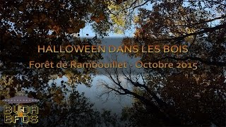 Halloweekend Bushcraft in the Forest of Rambouillet [Eng & FR sub]