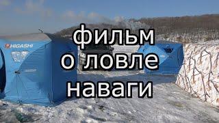 Ловля наваги на реке Майхе Приморский край
