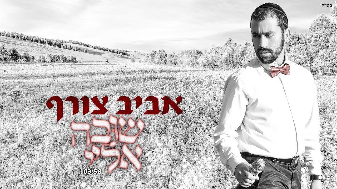 אביב צורף שובה אליי  | Aviv Tzoref Shuva Elay