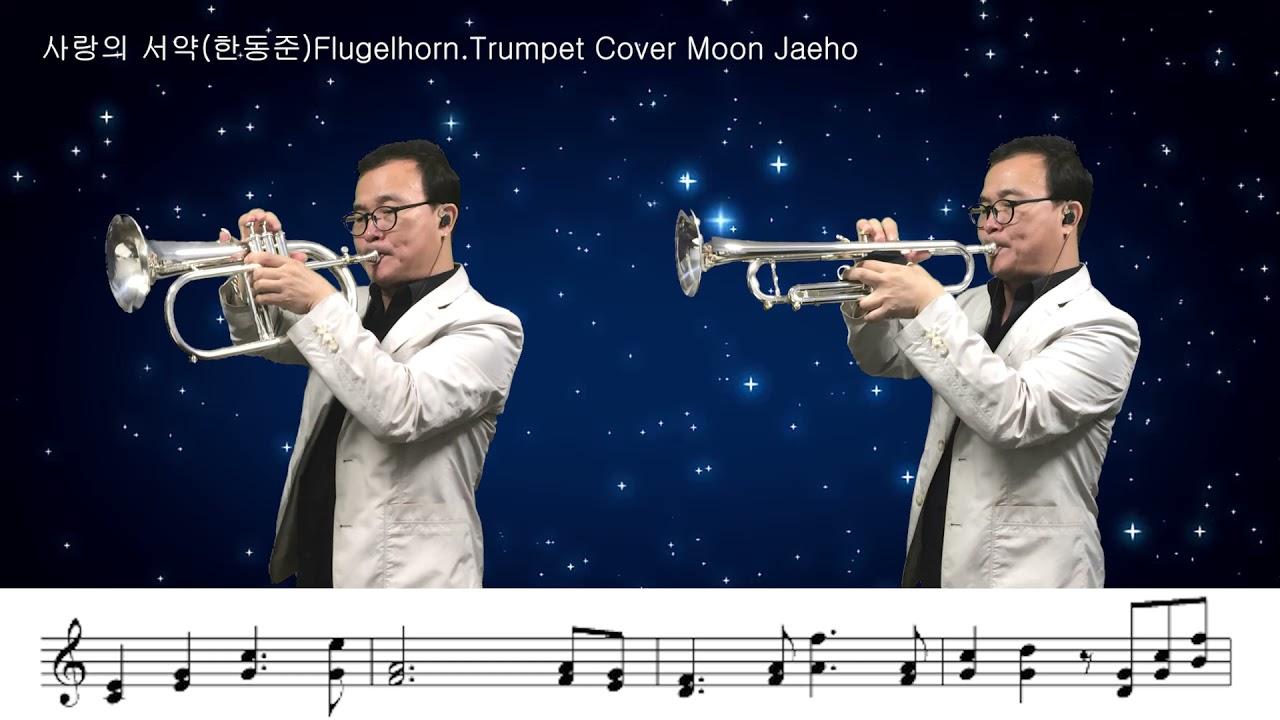 사랑의 서약(한동준)Flugelhorn Trumpet Cover Moon Jaeho