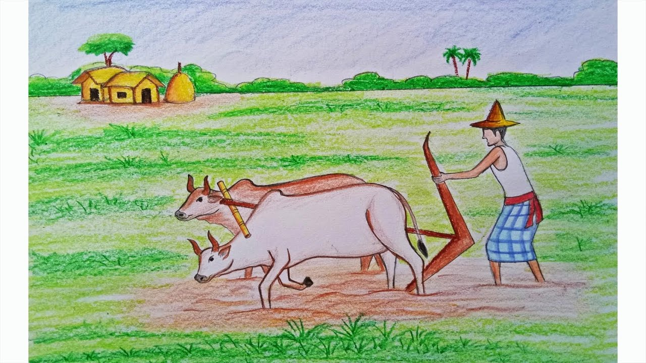 How to draw a scenery of cultivation Step by step (very easy) - YouTube for Farm Field Drawing With Color  166kxo