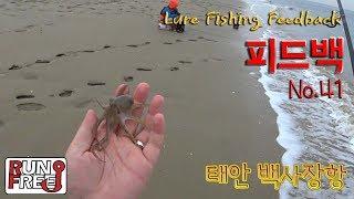 태안 백사장항 '워킹 쭈꾸미낚시 GO!' Salt Lure Fishing [피드백 41화]
