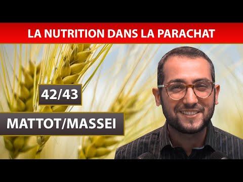 NUTRITION DANS LA PARACHAT 19 - MATTOT/MASSEI 42/43 - Shalom Fitoussi