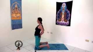 完整返老還童瑜伽法 適初 中 高級瑜伽 讓生命如水一般流動主題