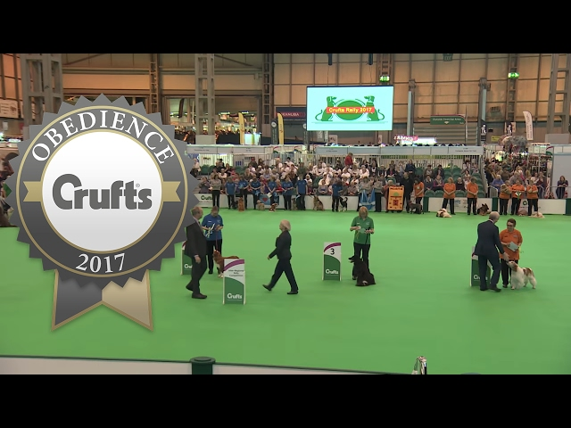 Inter-Regional Rally - Award Presentation - Part 2 | Crufts 2017
