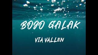 VIA VALLEN - Bojo Galak (Lirik)