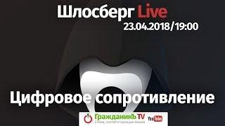 «Цифровое сопротивление» / Шлосберг Live #59 // 23.04.2018