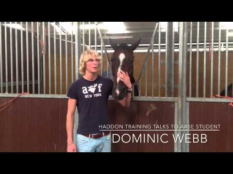 Dominic Webb and the British Showjumping AASE programme