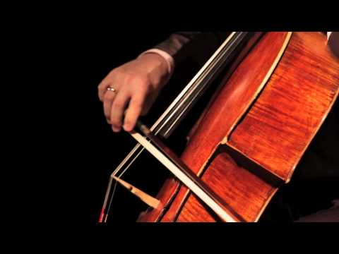 J.S. Bach Suite for Solo Cello no. 6 in D major, BWV 1012 Prelude by Matt Haimovitz