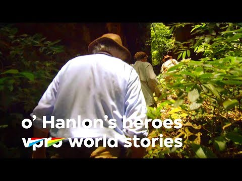 The Lost City in the Amazon rainforest - O'Hanlon's Heroes