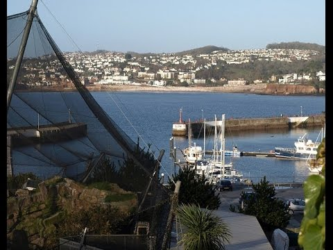 Places to see in ( Torquay - UK ) Living Coasts
