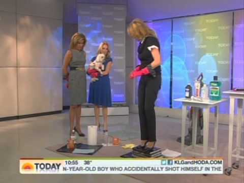 julieedelman   today show   pet cleanup   youtube