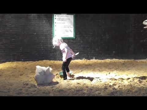 Rayleigh Dino Dig