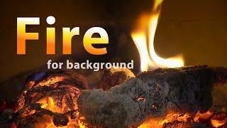 FIRE SOUNDS. Campfire meditation in nature. Bonfire music