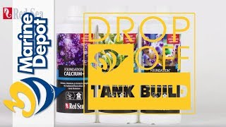 Drop-Off Tank Build #11: Dosing Reef Foundation, Algae Reactor Update + NEW FISH!!!