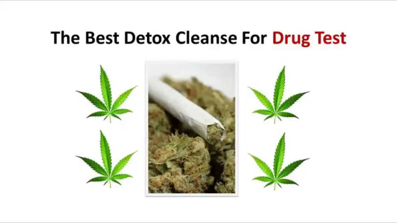The best detox cleanse for drug test youtube malvernweather Image collections