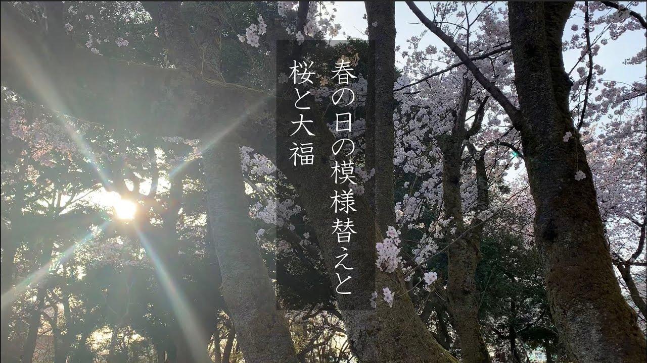 ある春の日の模様替え。花(桜)も団子も両方頂きます!