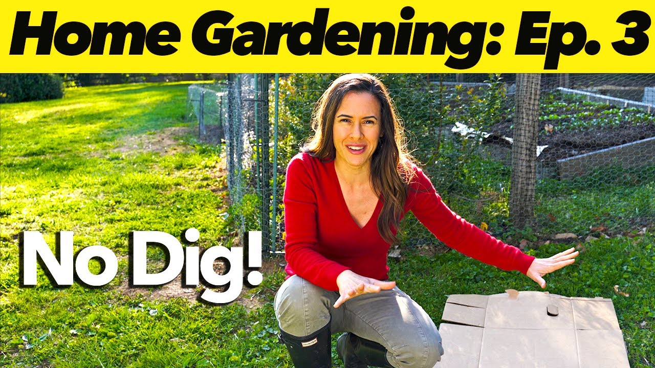 How to Build an EASY No-Dig Garden | Home Gardening: Ep. 3