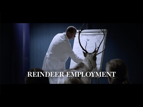 The Reindeer Employment