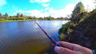 ОТЛИЧНЫЙ КЛЁВ в сильный ВЕТЕР! Рыбалка на реке в сентябре! Ловля щуки и судака на спиннинг! Джиг!