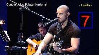 Pavel Stratan - Luluta - (Palatul National - concert live)