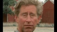 Duncan calls a Redneck Roofing Company