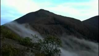 Marty Robbins - A little spot in heaven YouTube Videos