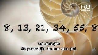E adevărat 7 - Numerele Fibonacci
