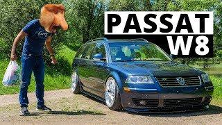 Grażyno trzymaj mnie...- VW Passat B5 W8
